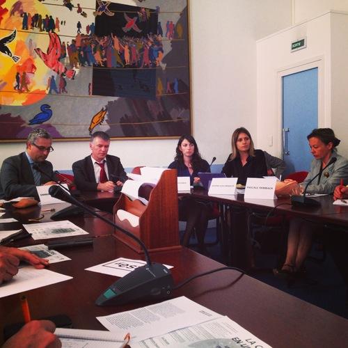 """Conférence """"La crise en Ukraine : un défi pour les relations entre l'Europe et la Russie"""" a l'Assemblée Nationale, organisée par l'association D'est et l'Institut Prospective & Sécurité en Europe (IPSE)"""