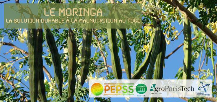 Mettons du PEPSS dans leur vie ! : Soutenez l'agriculture durable au Togo.